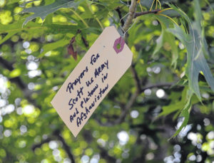 Carroll Wellness Center now offers Prayer Tree